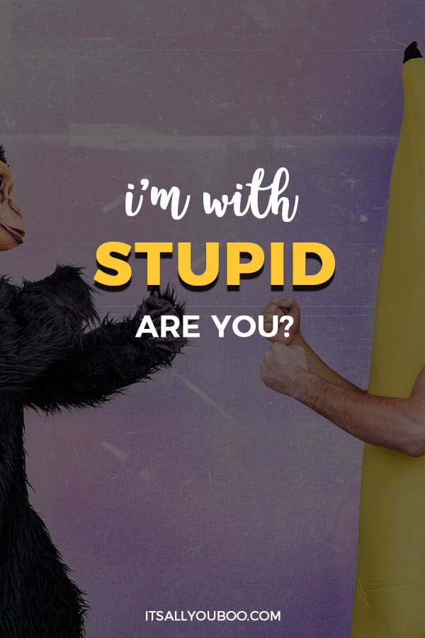 I'm With Stupid. Are You?