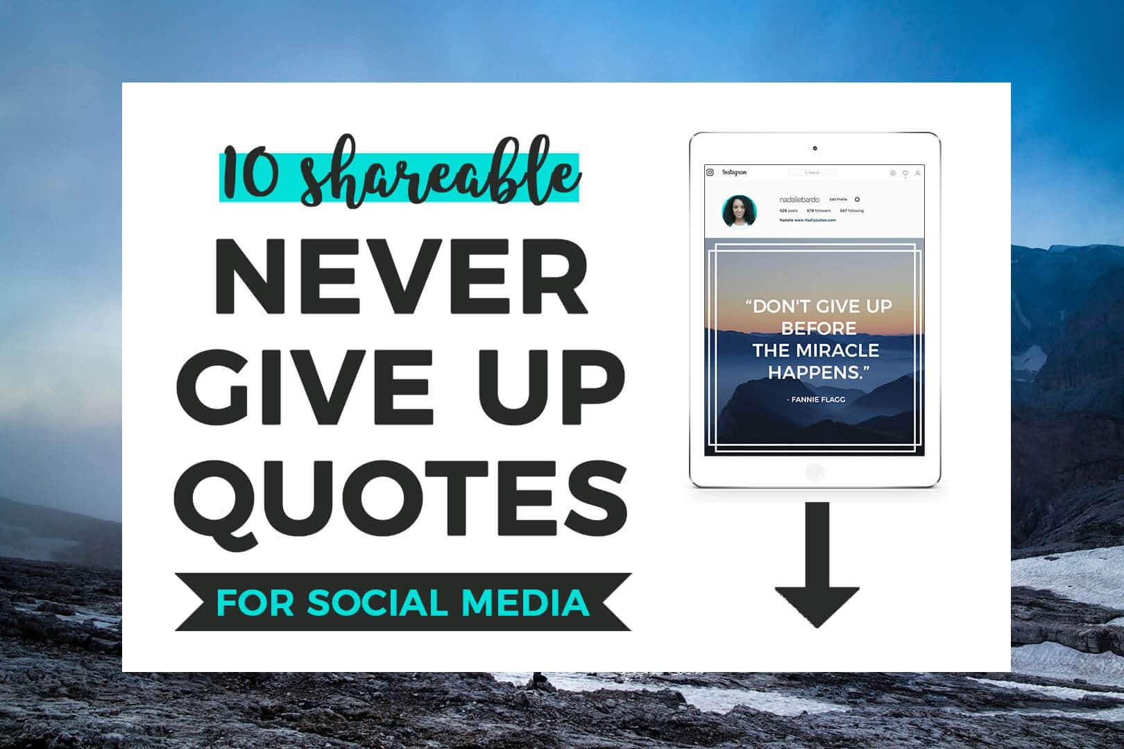 Quotes Never Give Up 10 Shareable Never Give Up Quotes  It's All You Boo