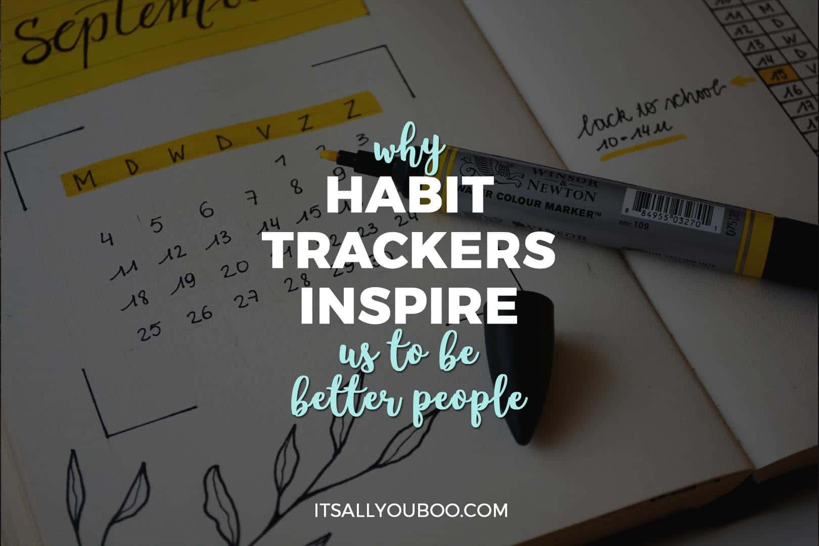 Why Habit Trackers Inspire Us to Be Better People