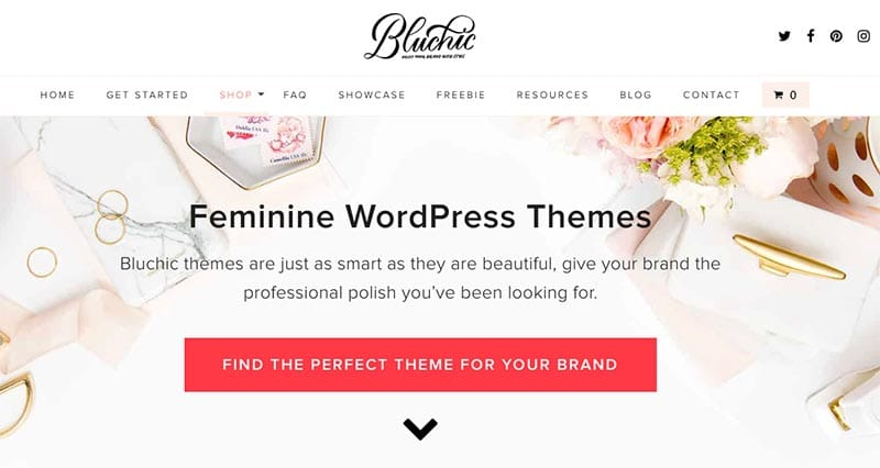 Best Affordable WordPress Themes for Beginners - BluChi
