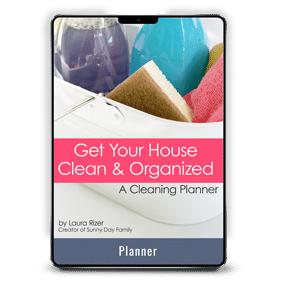 Get Your House Clean and Organized