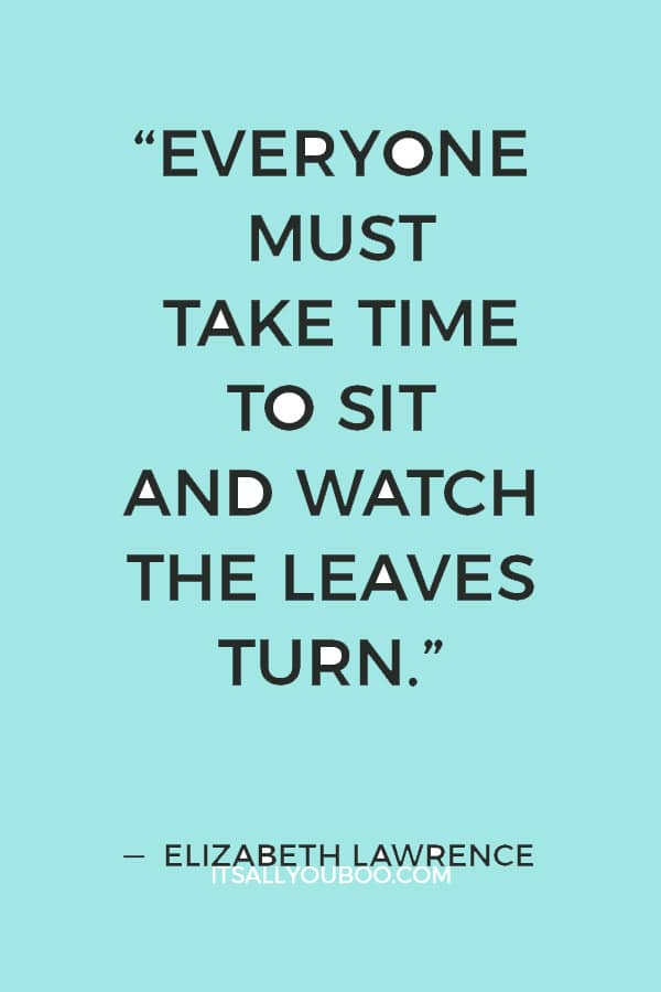 """""""Everyone must take time to sit and watch the leaves turn."""" ― Elizabeth Lawrence"""