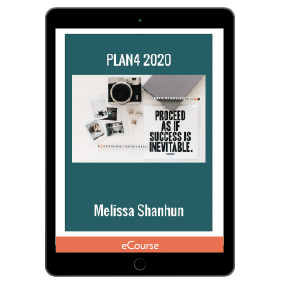PLAN4 2020