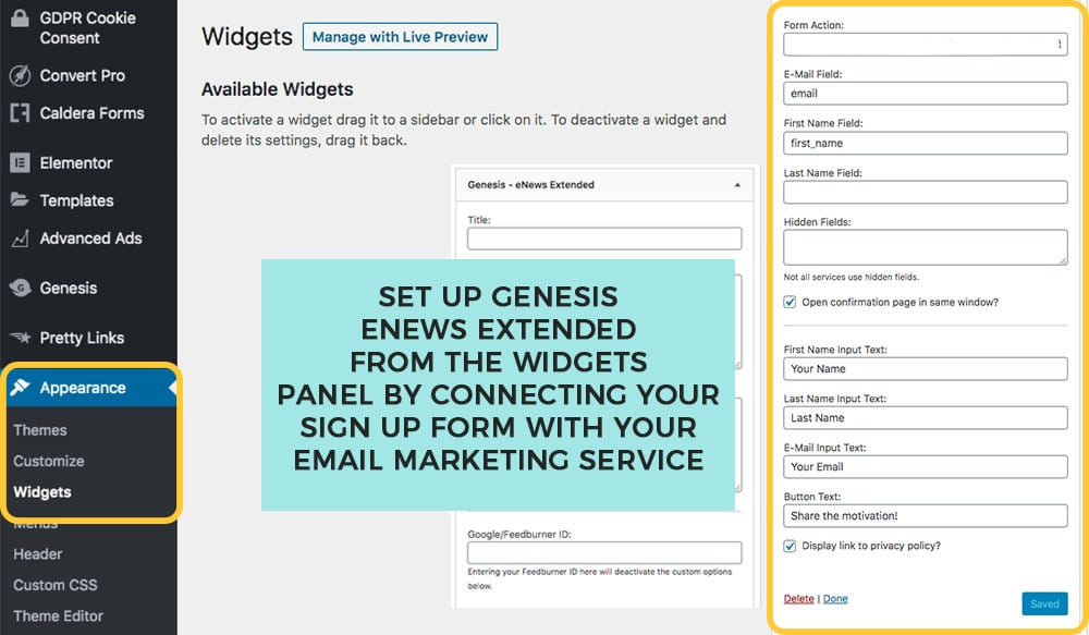 add and configure the genesis enews plugin