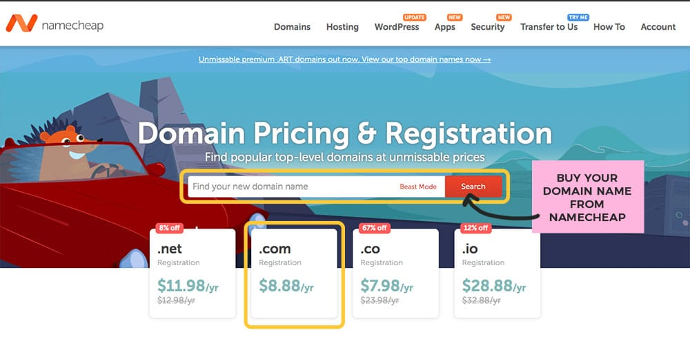 buying a domain from namecheap