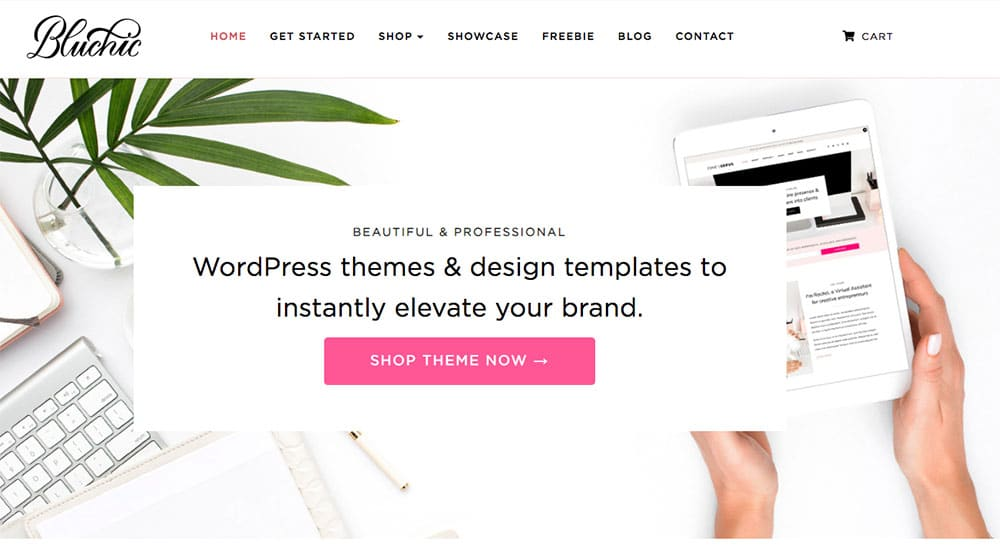 shop premium themes with BluChic
