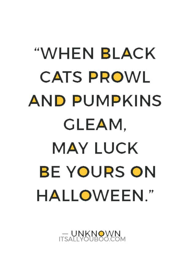 """When black cats prowl and pumpkins gleam, may luck be yours on Halloween."" ― Unknown"