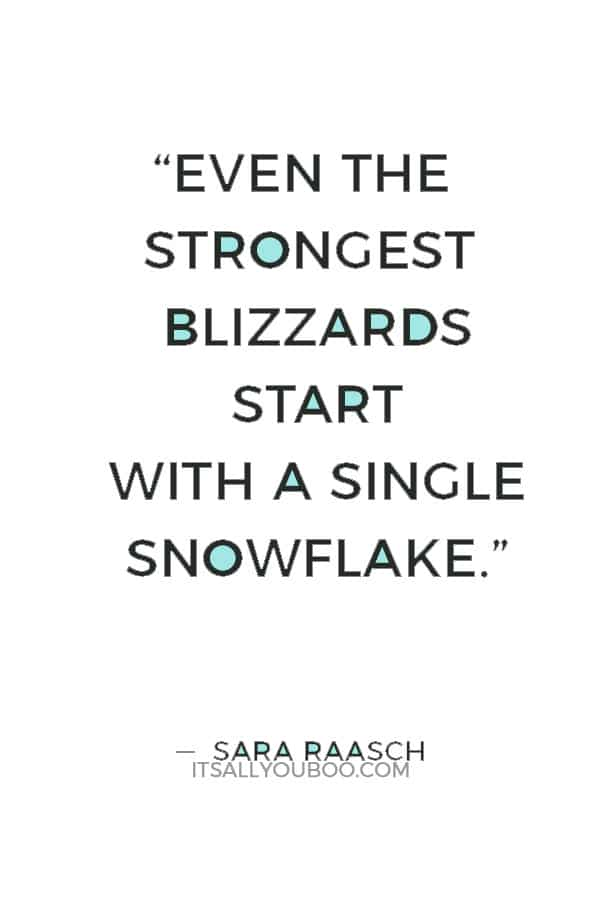 """""""Even the strongest blizzards start with a single snowflake."""" ― Sara Raasch"""