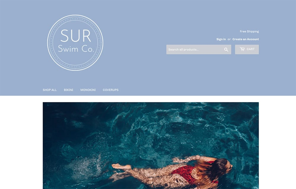 Sur Swim Co Dropshipping Part-Time Business Idea Example