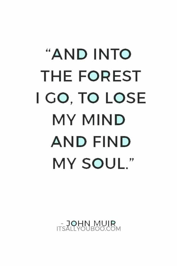 """""""And into the forest I go, to lose my mind and find my soul."""" – John Muir"""