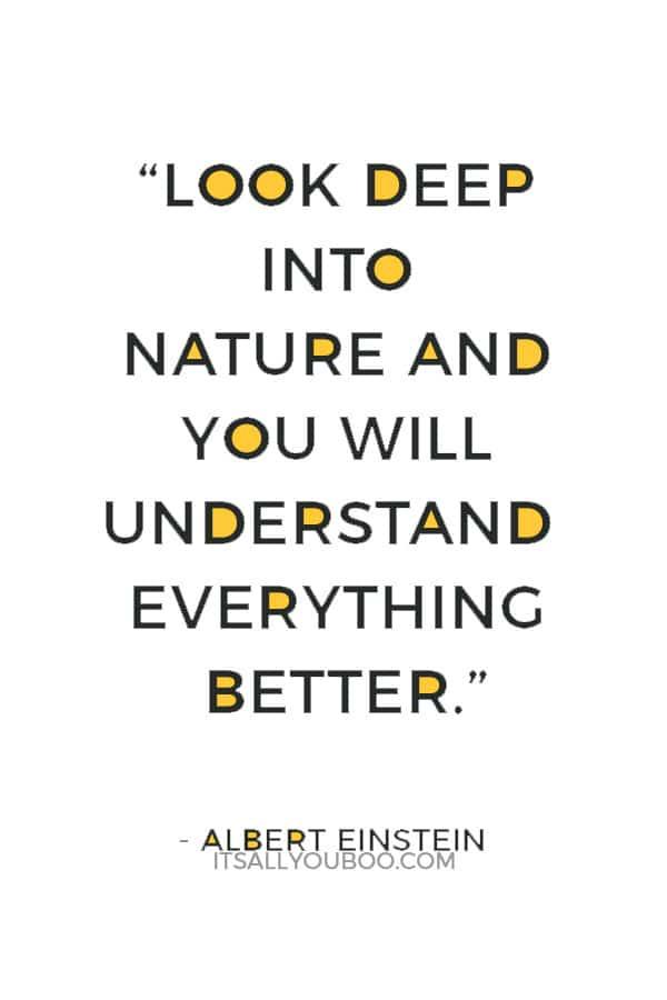 """Look deep into nature and you will understand everything better."" – Albert Einstein"
