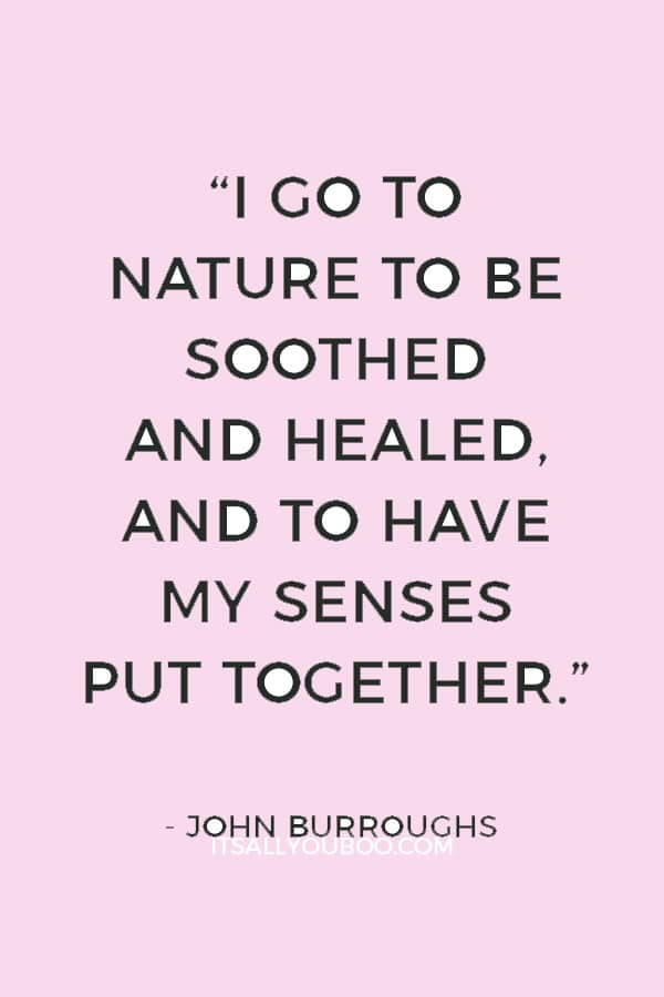 """""""I go to Nature to be soothed and healed, and to have my senses put together."""" – John Burroughs"""