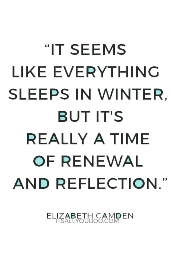 """It seems like everything sleeps in winter, but it's really a time of renewal and reflection."" ― Elizabeth Camden"